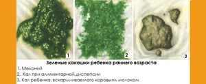 Понос зелёного цвета у ребёнка фото